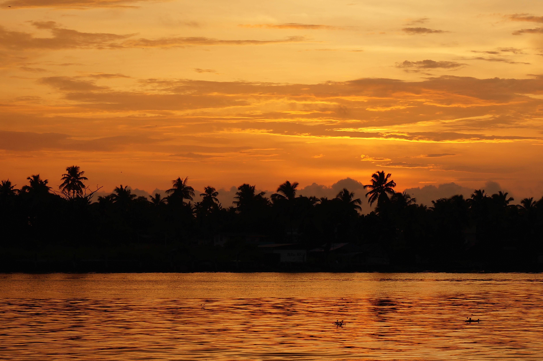 Sunset (Nash)